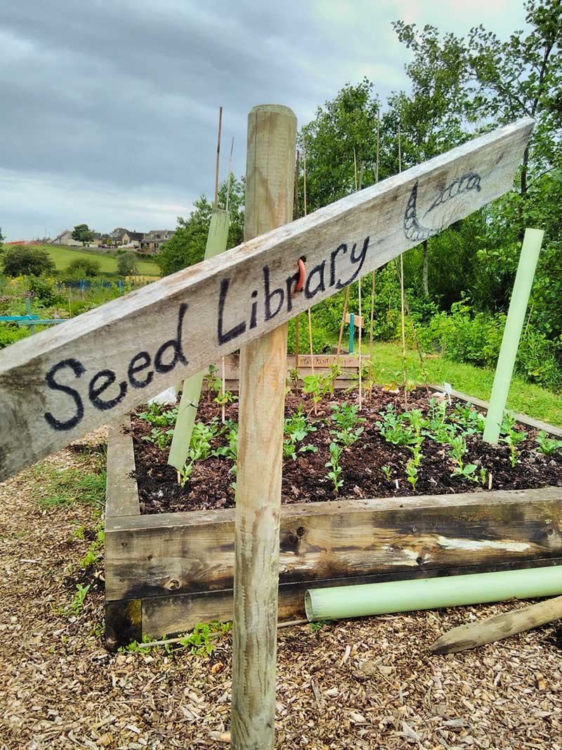 Case-study-Lancaster-seed-library-at-claver